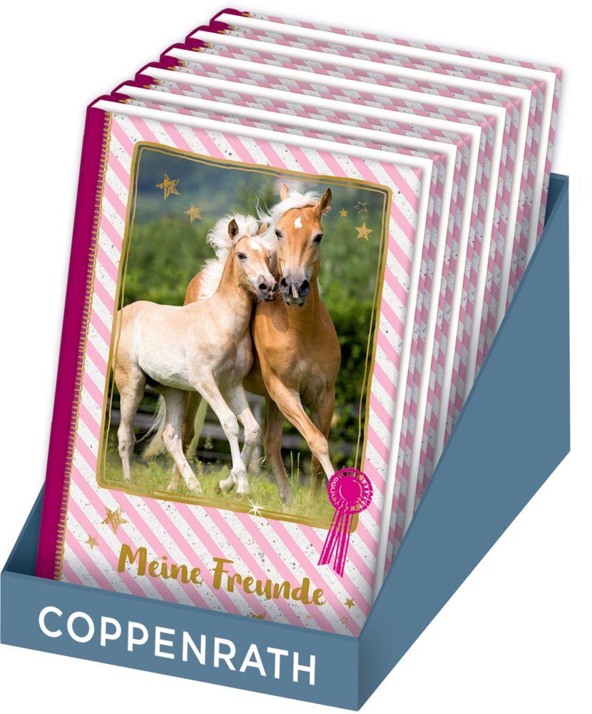 Freundebuch – Pferdefreunde – Meine Freunde: Stute mit Fohlen